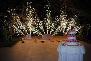 fontani_na_svadbe